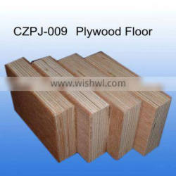 Container Plywooden flooring
