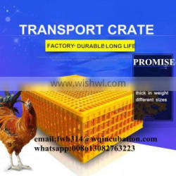 Transportation use plastic crate to transport of poultry
