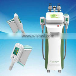 Lose Weight Directly Sale With Lowest Fat Melting Reasonable Price Hot Cryolipolysis Fat Melting Machine