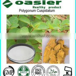 GMP Manufacture Supply Resveratrol Grape Extract