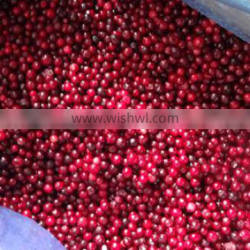 frozen style 2015 new crop lingonberry wild berry