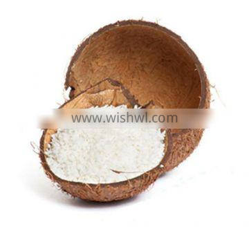 DESICCATED COCONUT HIGH FAT MEDIUM GRADE