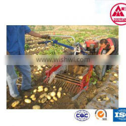 high technology Greenhouse equipment with agricultural irrigation equipment