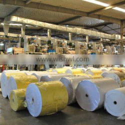 Jumbo roll release paper use in packing paper or release liner39