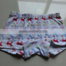 Boys Underwear Boxer-All Over Printings