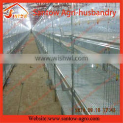 Poultry Farm Automatic Broiler Chicken Cage