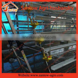 automatic poultry laying chicken egg broiler farming equipment