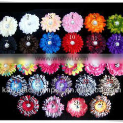 colorful dasiy flower use to decorate dress or just as headwear