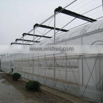 china factory, anti aphids insect protection net