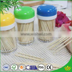 Safety Material Personalized Toothpicks