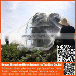 100% virgin hdpe with uv greenhouse insect net , plastic agriculture pe anti-insect net , nylon insect net with low price