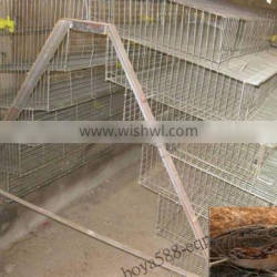 durable wire mesh cages quail farm used