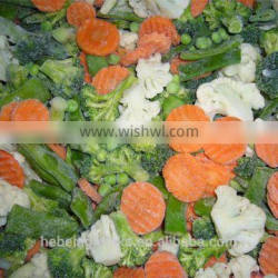 Frozen style fresh Chinese 4-mixed vegetables 2015