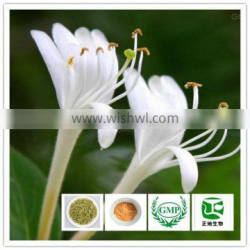Honeysuckle Flower Extract 98% Chlorogenic Acid for Antioxidation