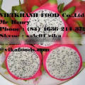 Fresh Dragon Fruit - Heaven tropical fruit Viet Nam - best price and top quality