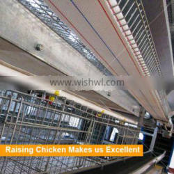 Tianrui Factory Direct Supply H Type Full Automatic rearing equipment for chicken