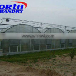 agriculture greenhouse film/agriculture plastic film for greenhouse