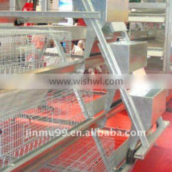 a type automatic chicken feeding system