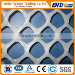 HDPE plastic net/plastic net / plastic net for turf reinforcement