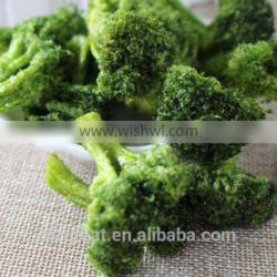 Vacuum Fried VF Dried Broccoli Crisps With Good Quality for Sales