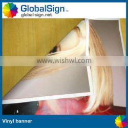 Double Sides Printing Vinyl Hanging banner