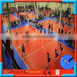 professional volleyball standard size court