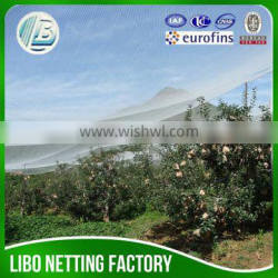 low price high quanlity orchard anti hail net