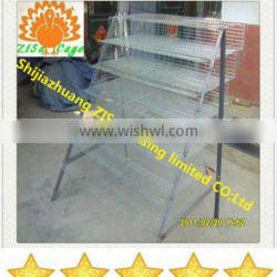 capacity 240 quails in one feedr quail battery cage hot sale