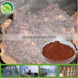 pure plant extract low price polysaccharide chaga extract