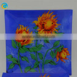 hot selling glass plates