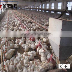 automatic broiler feeding system