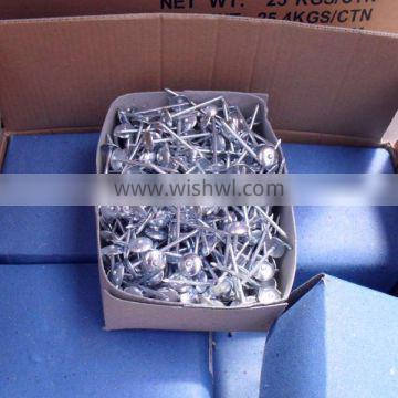 ROOFING NAIL 2.5'X10BWG