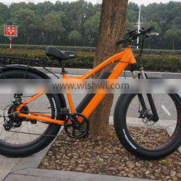 2016 best seller electric bike big power 48V 750W electric fat bicycle
