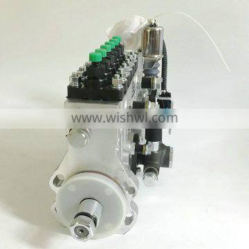 T73208219 Tianwei BYC Fuel Injection Pump For 1006TG3