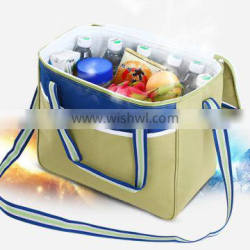 Promotional fruits food cans ice cooler bag portable beer can cooler