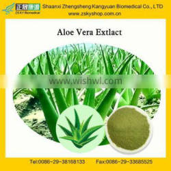 GMP Factory Supply Natural Aloe Vera Leaf Extract