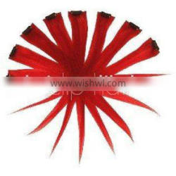 ColorFul Hair Extensions - Clip-on Instant Hair Extensions Red