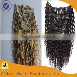 Cheap Full Cuticle Unprocessed Virgin Brazilian Afro Kinky Curly Clip In Hair Extension