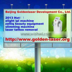 2013 Hot sale www.golden-laser.org eas system in malaysia