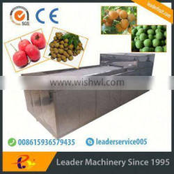 Leader olive pitting machine with website:leaderservice005