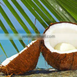 DESICCATED COCONUT LOW FAT FINE GRADE
