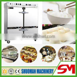 Superior quality newest design electric steamer
