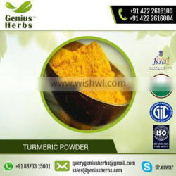 Organic Certified Premium Quality Turmeric Powder from Leading Manufacturer
