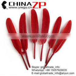 NO.1 Supplier ZPDECOR Factory Wholesale High Quality Cheap Dyed Red Duck Feathers Plume for Sale