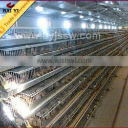 Wire Mesh Commercial Quail Cage Design Hot Sale Trade Assurance