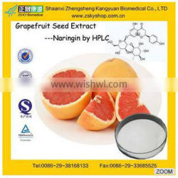 GMP Factory Supply High Quality Orange Extract Citrus paradisi