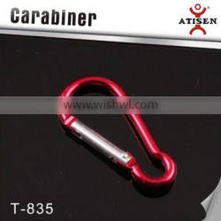 Wholesale Climbing Carabiner Hook Camping Key Ring Sport Keychain Camping Accessory
