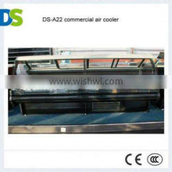 DS-A22 commercial air cooler