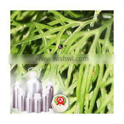 100% Pure and Natural Dill Seed oil