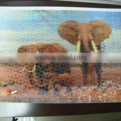 lenticular puzzle with 3D effect